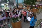 Naravoslovni dan v tropskem vrtu Ocean orchids v Dobrovniku